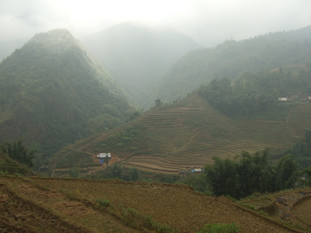 The rice terraces just outside of Sapa