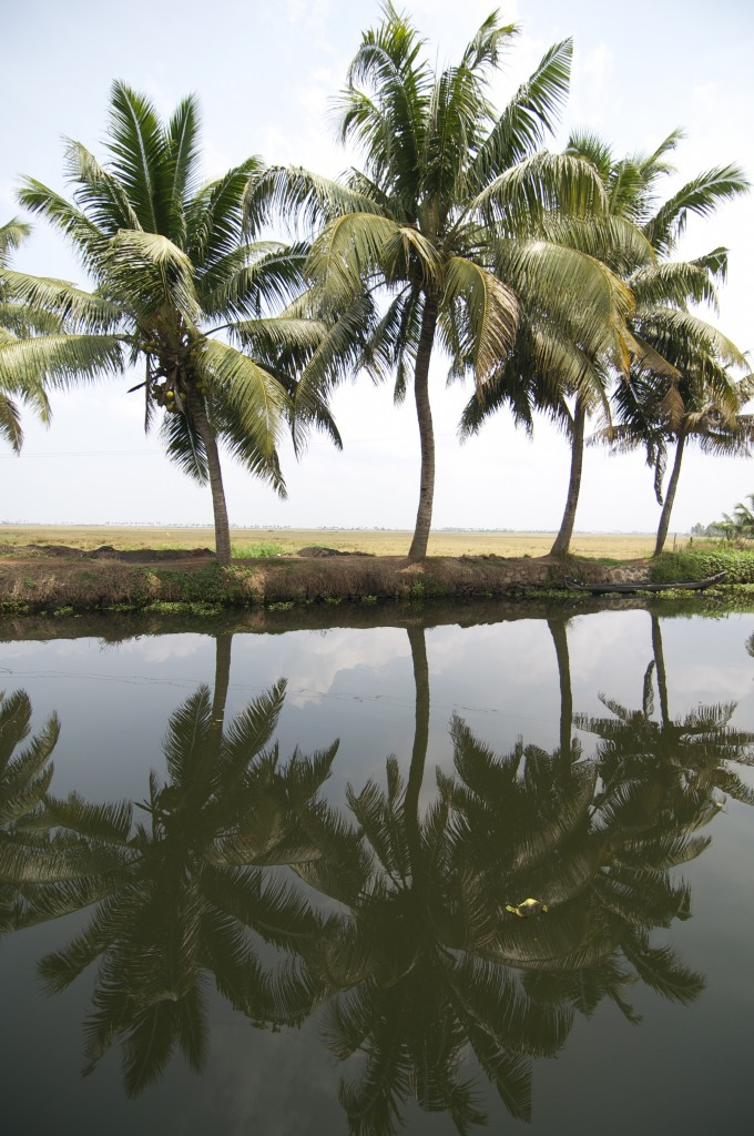 Serene and tranquil Kerala, God's Own Country