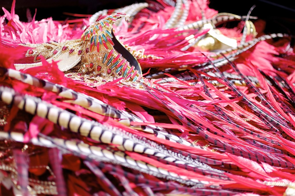 Mask and feathers at Carnival in Trinidad