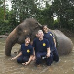 Mahout Training at Eddy Elephant Chiang Mai