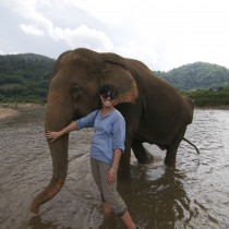 Making my dream come true by volunteering at the Elephant Nature Park