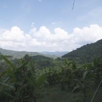 The views along the trek were impressive